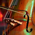 Double Bass by Renee Hubbard Fine Art Photography