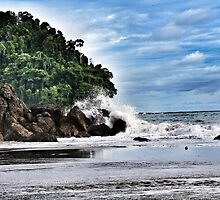 The Wave - Manuel Antonio by Selena Bedgood