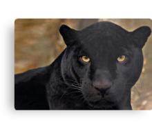 The Black Panther Metal Print
