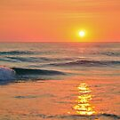 Golden Dawn by BK Photography