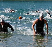 Kingscliff Triathlon 2011 Swim leg C380 by Gavin Lardner