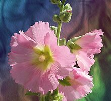 Holly Hock Frills by Virginia McCorkell