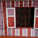 Pink Red Striped Window by Jane McDougall