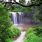 Dangar falls by leksele