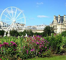 Jardin des Tuileries - Paris by Kim North