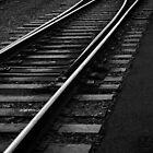Tracks at Sunset - Lake Placid New York by Debbie Pinard