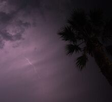 fork lightning france by skaterfromglos
