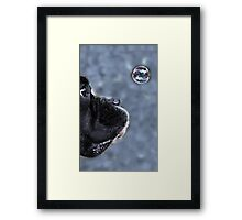 It's A Bubble -Boxer Dog Series- Framed Print