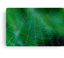 Matrix On Green Canvas Print