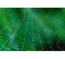 Matrix On Green Photographic Print