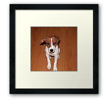 """You Are Not Mad, Are You?"" Framed Print"