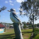 The Kurri Kurri Kookaburra by PollyBrown