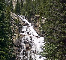 Hidden Falls in Grand Teton National Park, Wyoming, USA by Kenneth Keifer