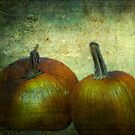 There Were Never Such Devoted Pumpkins by Sarah Vernon