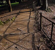Walkway on the Parc by sstarlightss
