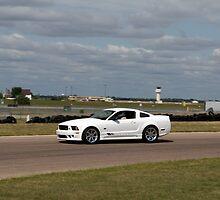 Jim Riehl's Saleen Mustang by Paul Danger Kile