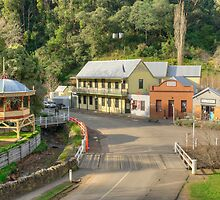The Historic Township of Walhalla by Vickie Burt