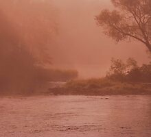 Autumn Enchantment by Joanne  Bradley