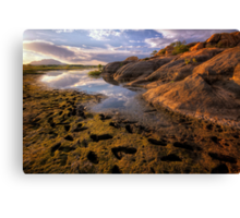 Before Me Canvas Print