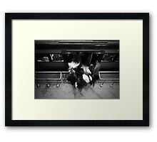 No Rush Framed Print