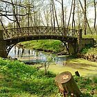 The old bridge in park by mski