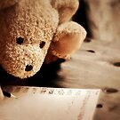 To a very special bear... by Astrid Ewing Photography