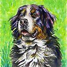 Bernese Mountain Dog by Francesca Romana Brogani
