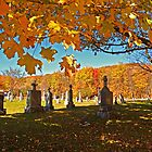 Falling Leaves - Fall Autumn Scenes - Ancient Cemetery Monuments by Chantal PhotoPix