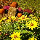 Orange Pumpkins on Hay Bales surrounded by Red Chrysanthemum Flowers &amp; Yellow Daisies by Chantal PhotoPix