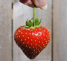 My Strawberry by DinocoSparrow