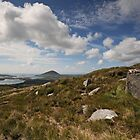 Connemara National Park by Simone Kelly