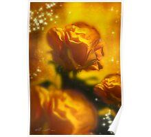 Golden Roses Poster