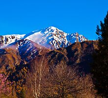 Alpine Arrowtown - South Island - New Zealand by Paul Davis
