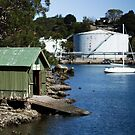 Boat Shed, Gore Cove, Sydney Harbour by Roger Barnes