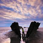 Shipwreck, Berrow, Somerset, England by Craig Joiner