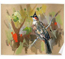 bird-o2 Poster