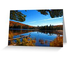 Fall Forest Scene - Autumn Lake Reflection with Floating Logs Greeting Card
