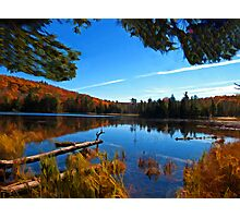 Fall Forest Scene - Autumn Lake Reflection with Floating Logs Photographic Print