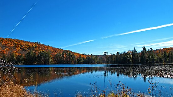 Fall Forest Scene with Orange Leaves - Autumn Lake Reflection under a Blue Sky by Chantal PhotoPix