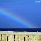 rainbow by Phlite