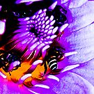 Bees painting...Oh wondering; is it Macro bee..eee..ee?:) Got 5 Featured Works by Kornrawiee