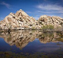 Rock Reflections, Barker Dam by Philip Kearney