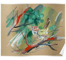 bird-o8 Poster