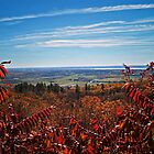 Fall Autumn Countryside viewed through a Red Leaf Bush under a Blue Sky by Chantal PhotoPix