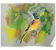 bird-09 Poster