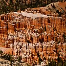 Bryce Canyon Hoodoos by Greg Summers