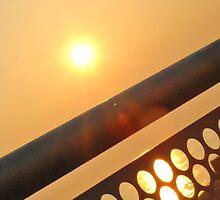 Sun through Railings by Jamie O'Mara