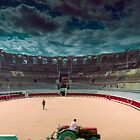 Arena in aRLES by bchamp