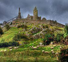 Rock of Cashel by Lanis Rossi