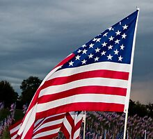 Freedom Flag by Carol Bock